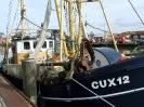 CUX12